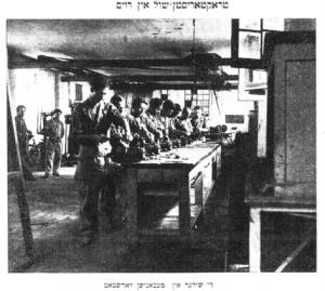 I campi Displaced Person per profughi ebrei stranieri in Italia 1945 - 1950
